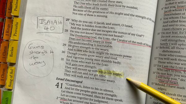 Picture of bible with words 'wings like eagles' highlighted.