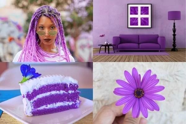 Picture of lady with purple hair, purple sofa, purple cake, purple flower