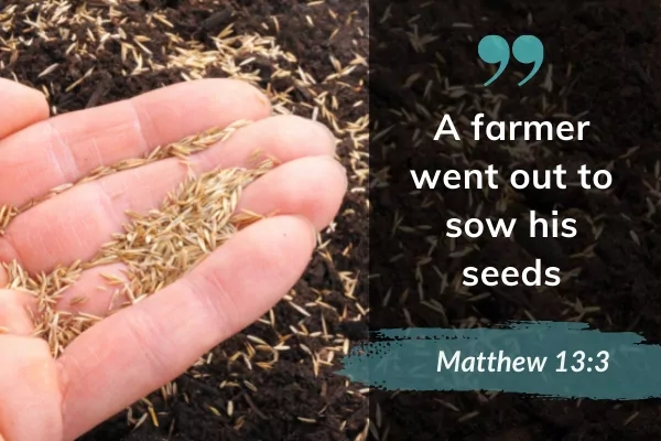 Picture of person holding som seeds with text: A farmer went out to sow his seeds. Matthew 13:3