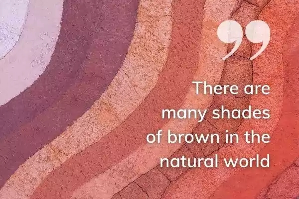 Picture of layers of different shades of brown soil with text: There are many shades of brown in the natural world