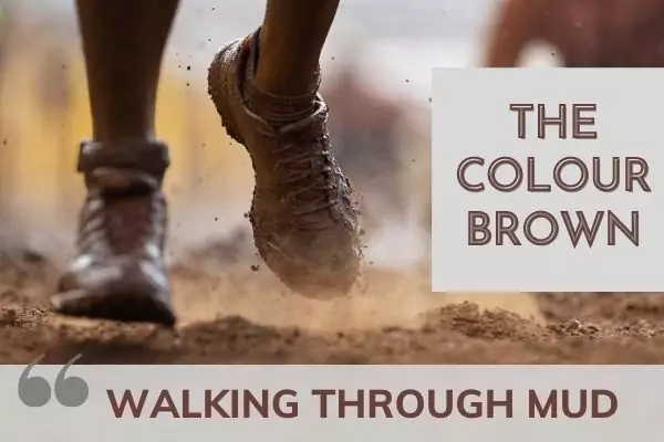Picture of feet walking through mud with text: the colour brown - walking through mud