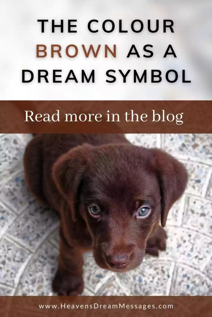Picture of brown puppy with text: meanind of brown as a dream symbol; read more in the blog